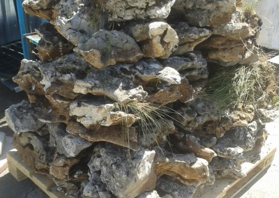 Камъни (15)