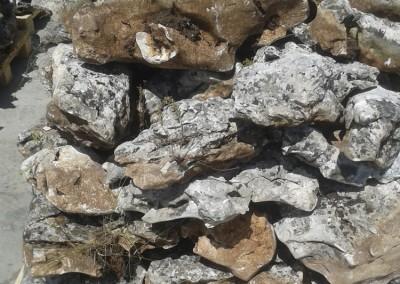 Камъни (18)